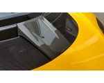 LOTUS EVORA 430 FRONT ACCESS COVER - CARBON
