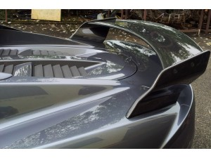 LOTUS ELISE S2 2010 CARBON FIBER REAR WING