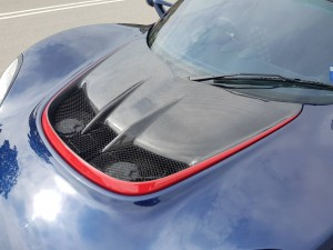 LOTUS EXIGE V6 380 SPORTS FRONT ACCESS COVER